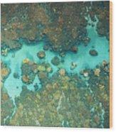 Olowalu Coral Wood Print
