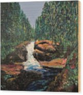 Olympic Park Waterfall Wood Print