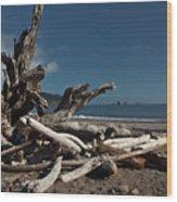 Olympic Peninsula Coast Wood Print