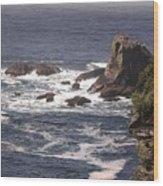 Olympic Peninsula Coastline Wood Print