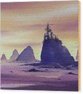 Olympic Seashore Wood Print