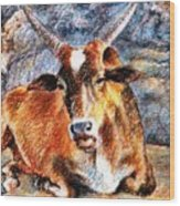 Om Beach Bull Wood Print by Claudio  Fiori