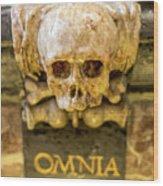 Omnia Mors Aequat Wood Print