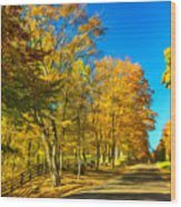 On A Country Road 4 - Paint Wood Print