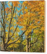On A Country Road 5 - Paint Wood Print