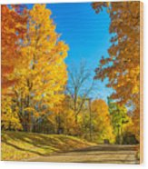 On A Country Road 6 Wood Print