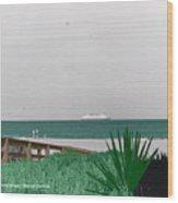 On A Florida Beach Wood Print