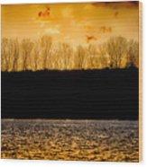 On A Golden Lake Wood Print