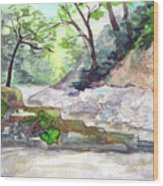 On A Mountain River Wood Print