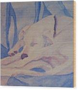 On Fallen Blankets Wood Print