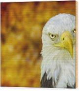 On Fire The American Bald Eagle Wood Print