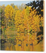 On Golden Pond 2 Wood Print