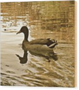 On Golden Pond Wood Print