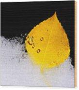 On Ice Wood Print