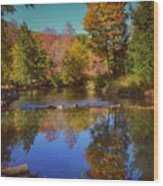 On Kinzua Creek Wood Print