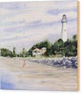 On The Beach at St. Simon's Island Wood Print
