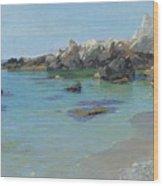 On The Capri Coast Wood Print by Paul von Spaun
