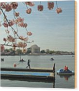 On The Cherry Blossom Dock Wood Print
