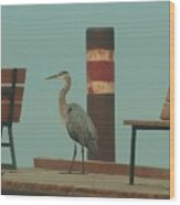 On The Dock With Heron Wood Print