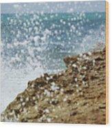 On The Edge Blowing Rocks Preserve Jupiter Island Florida Wood Print