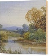 On The River Parret Wood Print