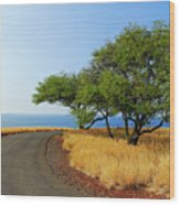 On The Road To Lapakahi Wood Print