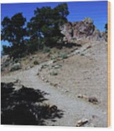 On The Road To Virginia City Nevada 16 Wood Print