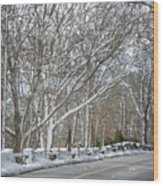 On The Road To Woods Hole Wood Print