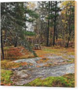 Picnic On The Rocks Wood Print