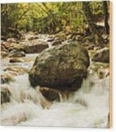 On The Rocks Wood Print