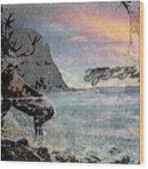 On The Rocks. Wood Print