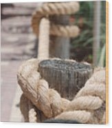 On The Ropes Wood Print