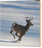 On The Run Wood Print by Todd Hostetter