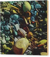 On The Shores Of My Imagination Wood Print