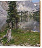 On The Snowy Mountain Loop Wood Print