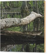 On The Swamp Wood Print
