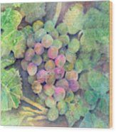 On The Vine Wood Print by Arline Wagner