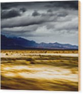 On The Way To Death Valley Wood Print