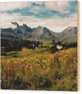 On The Way To Elgol Wood Print