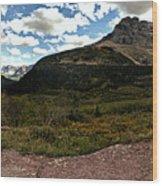 On The Way To Iceberg - Panorama Wood Print