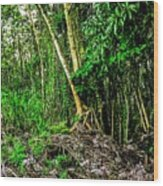On The Way To Lava Tree Aloha Wood Print