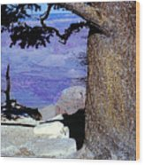 On The West Rim Of The Grand Canyon Wood Print
