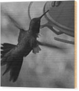 On The Wings Of A Hummingbird Wood Print