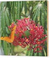 On The Wings Of Butterflies Wood Print