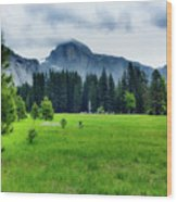 On The Yosemite Valley Floor Wood Print