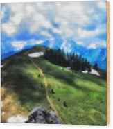 On Top Of The World  Wood Print
