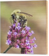 On Top Of The World - Bee Style Wood Print