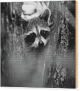 On Watch - Bw Wood Print