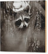On Watch - Sepia Wood Print