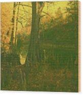 Once Upon A Time Wood Print